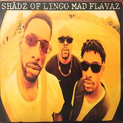 SHADZ OF LINGO:MAD FLAVA(JACKET A)
