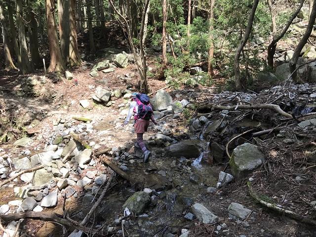 野登山 ミツマタの森ルート 渡渉ポイント