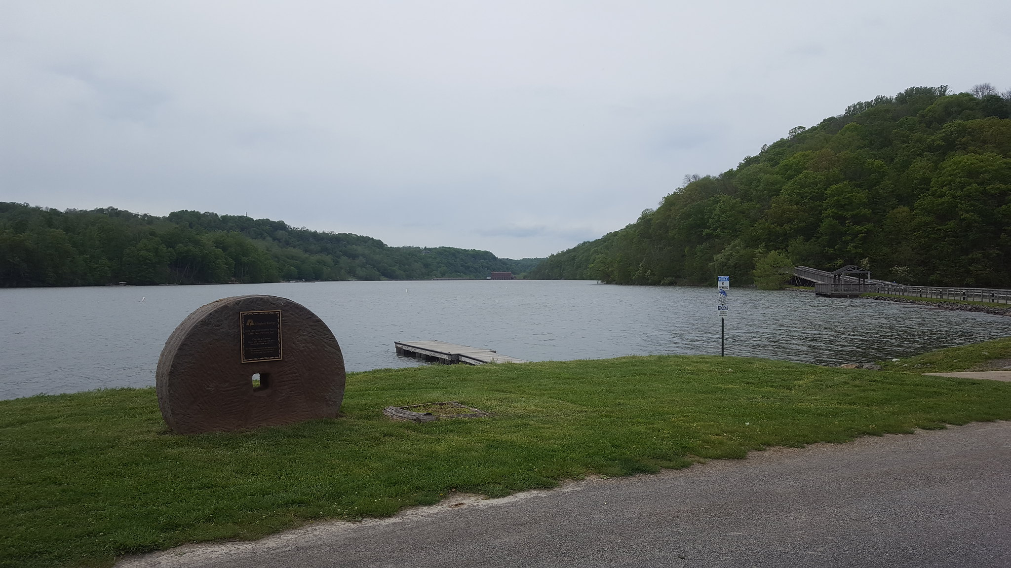 Loch narrow-leaved: landing and care 18