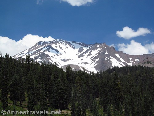 Afternoon views of Mt. Shasta from near Bunny Flats, Shasta-Trinity National Forest, California