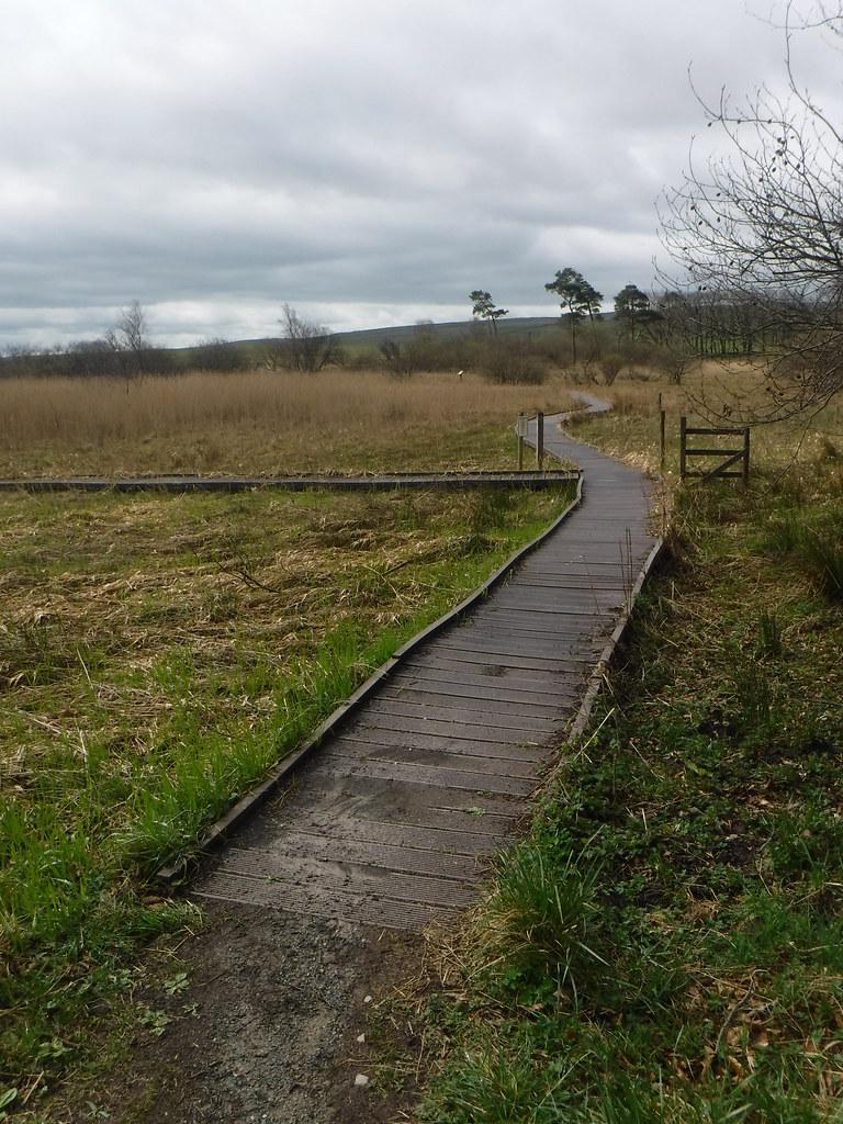 Tarn Moss 1