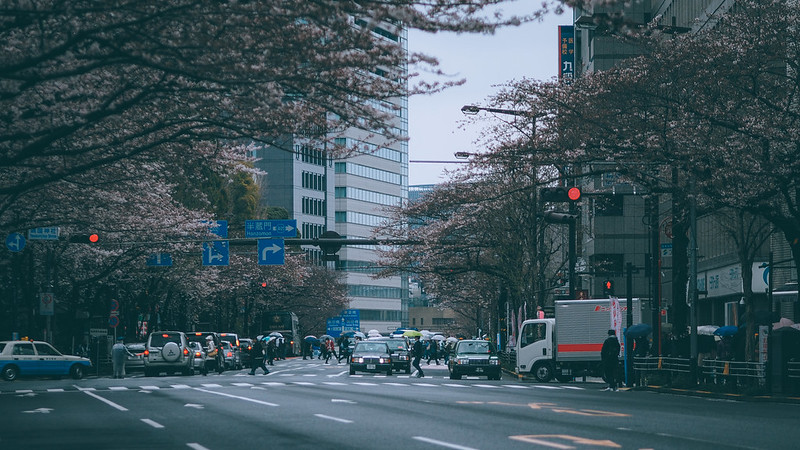 靖國神社|東京都 Tokyo