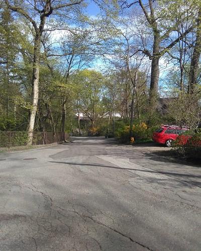 Down the hill #toronto #wychwoodpark #latergram