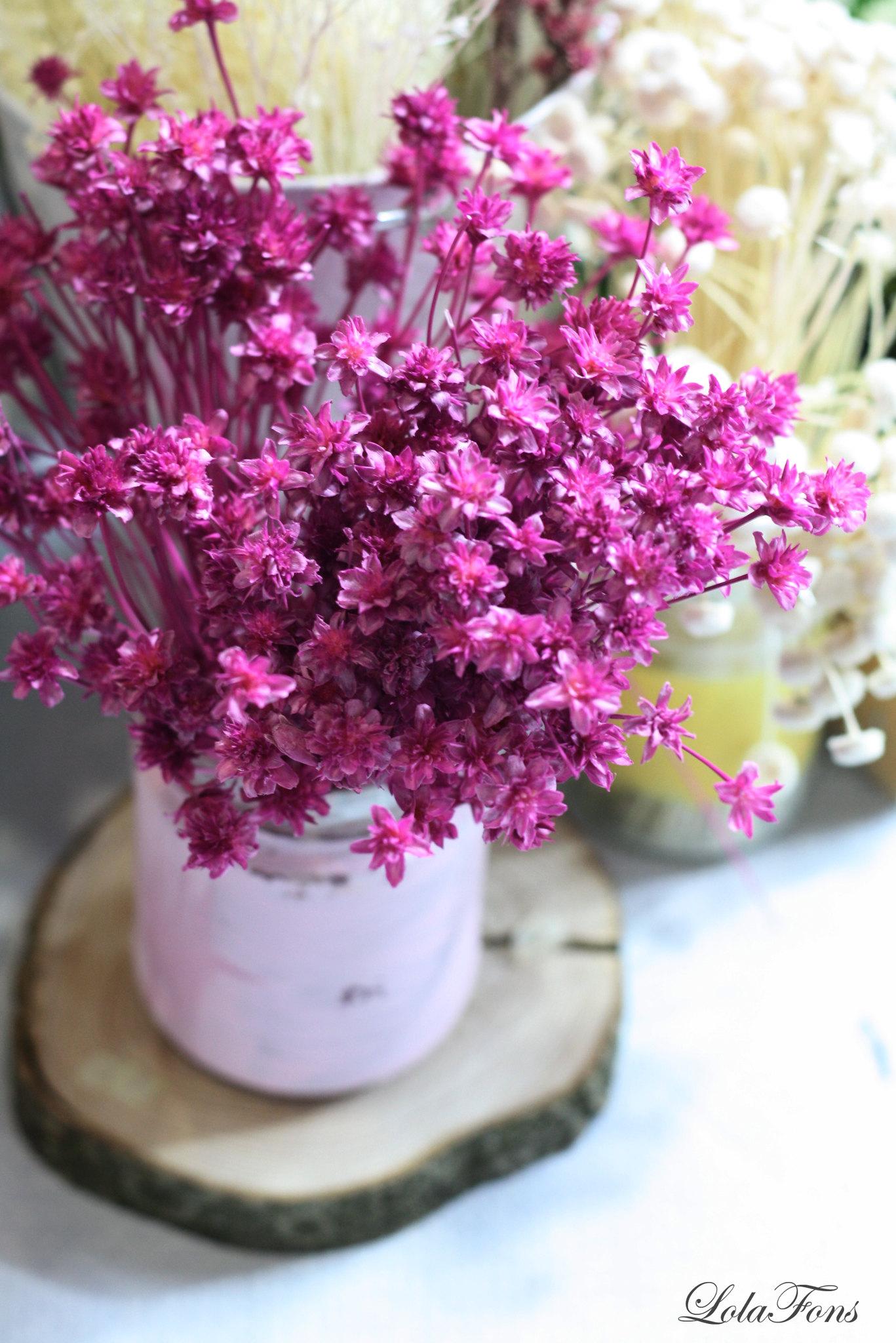 flores5