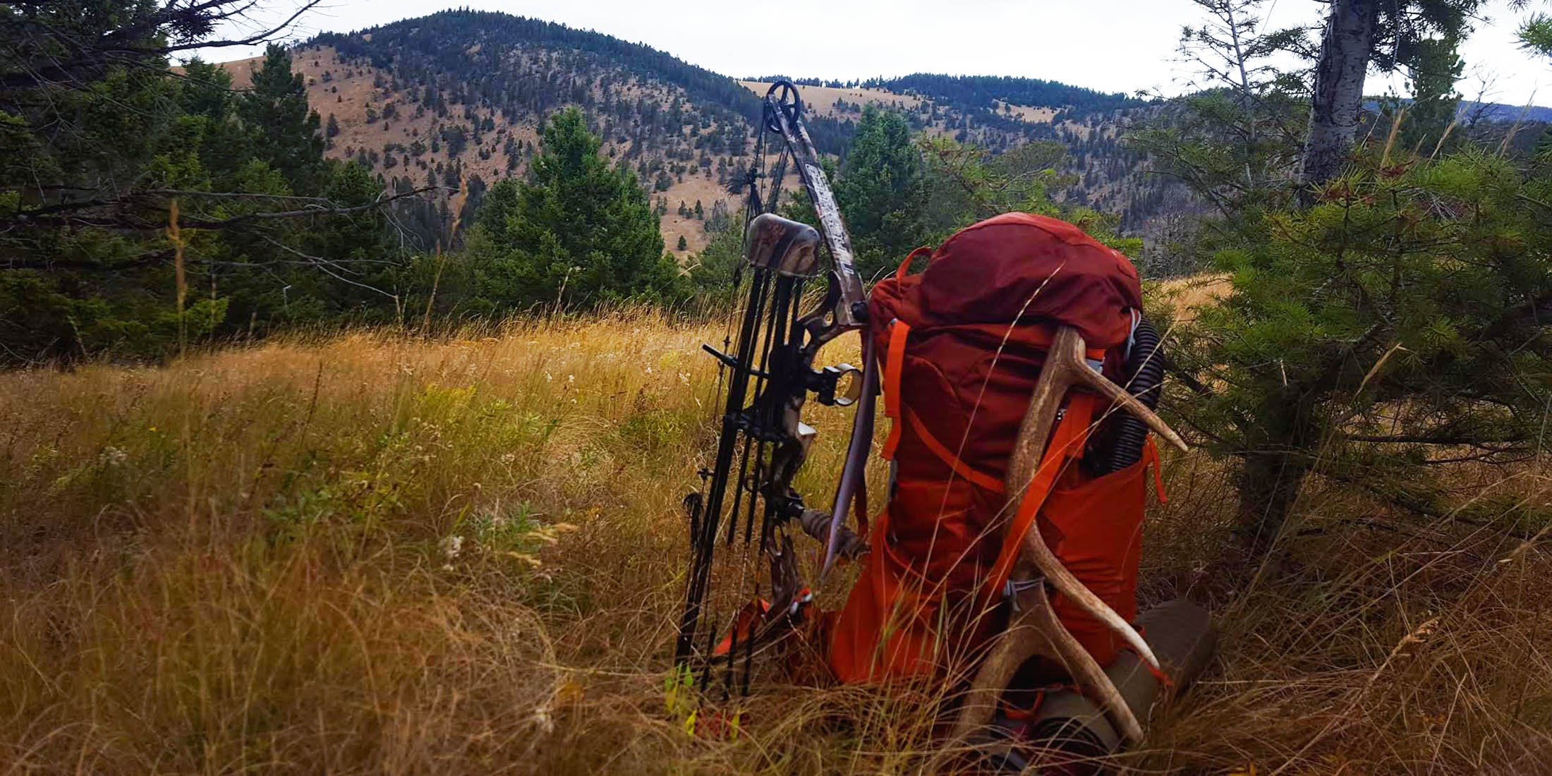Find hunting licences, guides, permits and maps for the Little Belt Mountains, Montana.