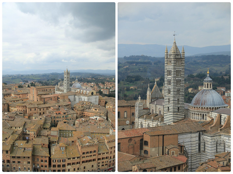 Views from Torre del Mangia, Siena