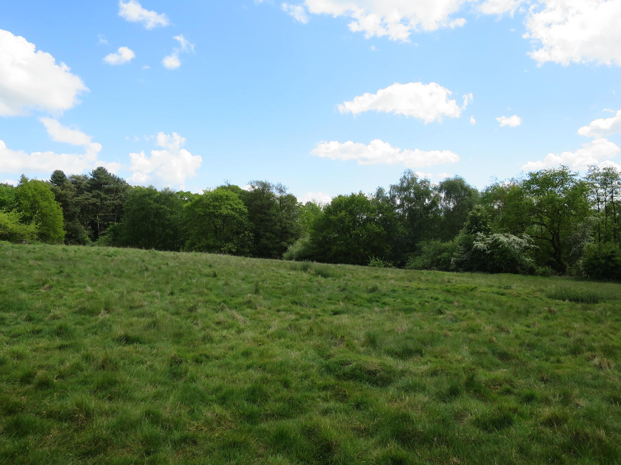 Coombe Country Park, Hello Im Clo, Culture Blogger 24