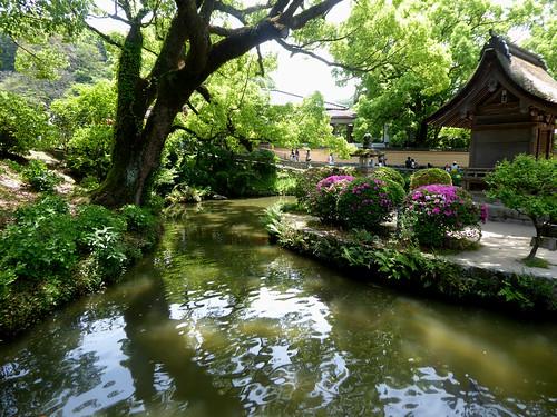 jp-fuk-region-dazaifu-temple Tenmangu (14)