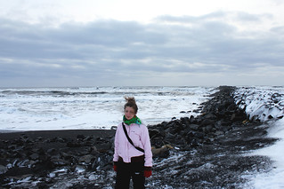 Vik Black Sand Beach and Flossy | by saraflossy