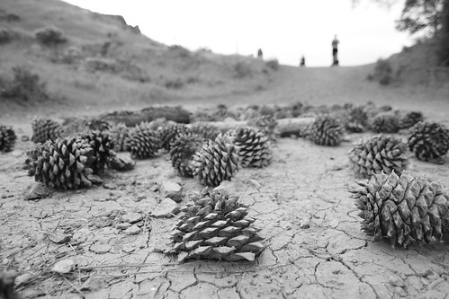 Cones and Dirt | by brandur.leach