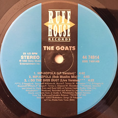 THE GOATS:DO THE DIGS DUG?(LABEL SIDE-B)