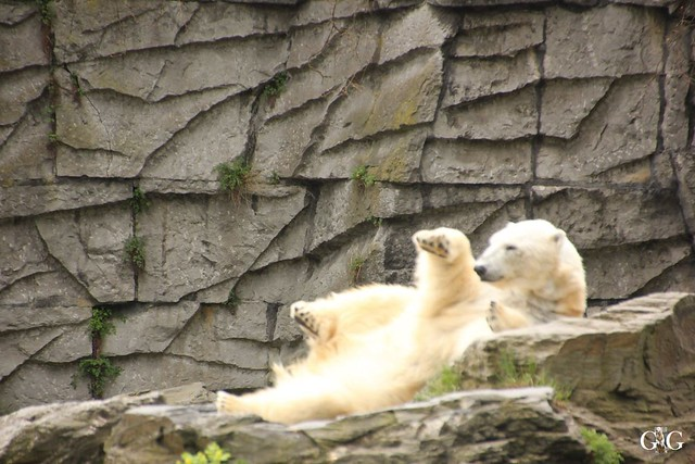 Besuch Tierpark Friedrichsfelde 17.04.178