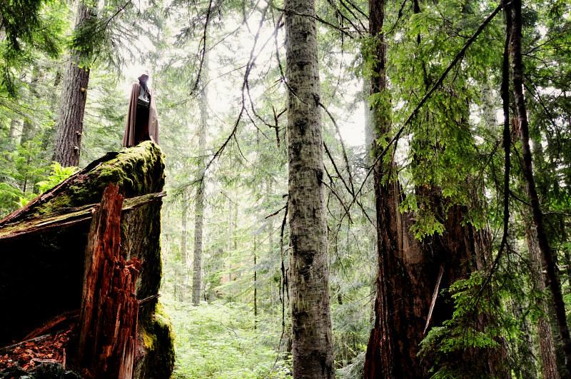 Iron Mountain Hike Cloaked @ Mt. Hope Chronicles