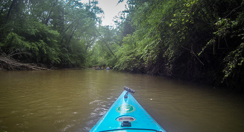 Long Cane Creek with Lowcountry Unfiltered-11