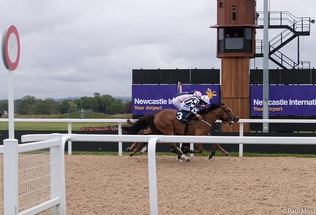 Newcastle Races 29/6/2017 Racing Tips