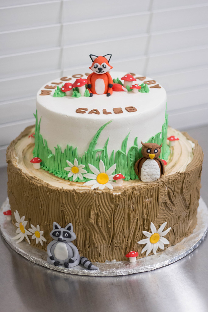 Woodland Animals Baby Shower Cake Grace Ful Cakes Flickr