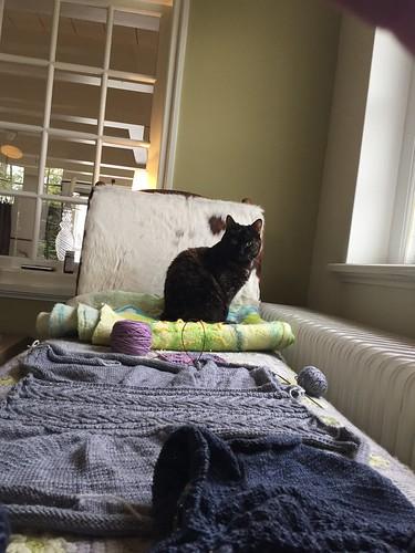 yarn works in progress