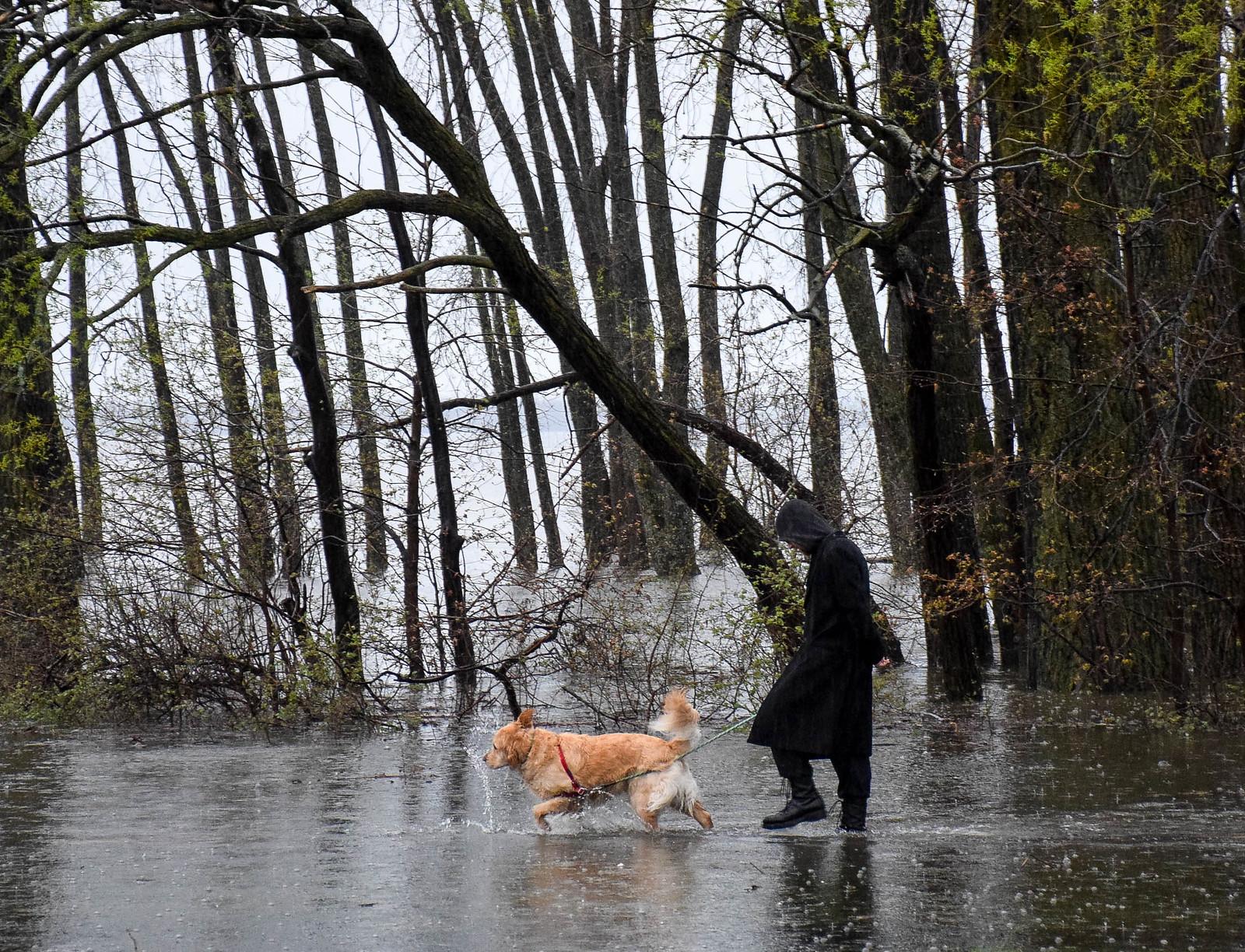 Gatineau, Quebec Flood 2017
