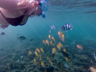 Ao Leuk Bay Snorkeling