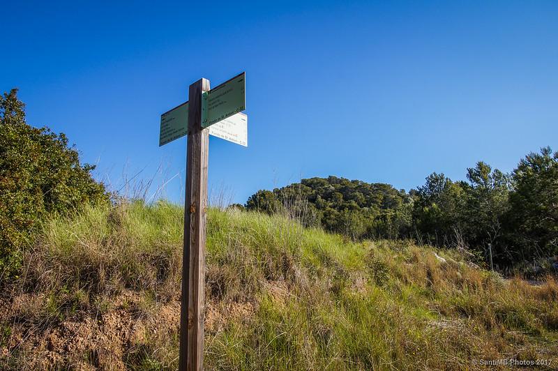 Cruzando la carretera de Sant Antoni