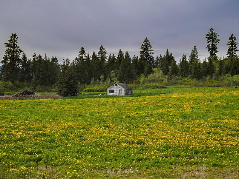 Small house in prairie