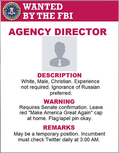 FBI Executive Search
