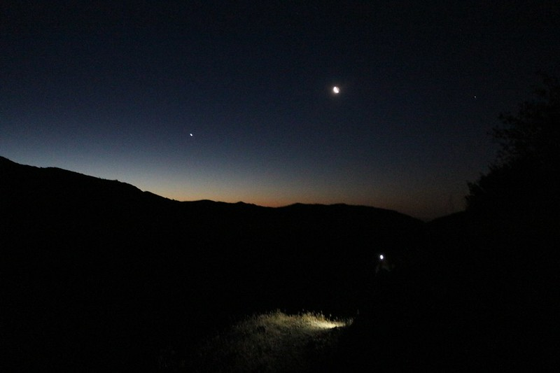 We woke up before 4 and started hiking uphill in the dark at 5am, south from PCT mile 226. That's Vicki's headlamp shining down on the trail.