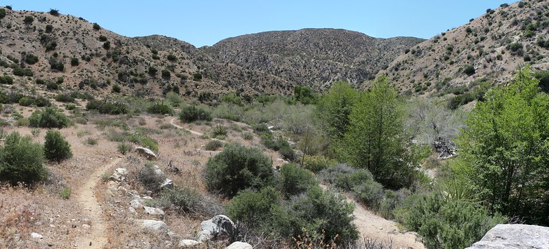 Panorama shot as the canyon opens up near PCT campsite WRCS0230