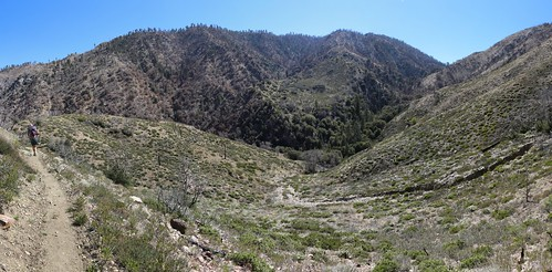 0604 Panorama shot of Peak 8191 across the way as we continue hiking on the PCT at mile 237 | by _JFR_