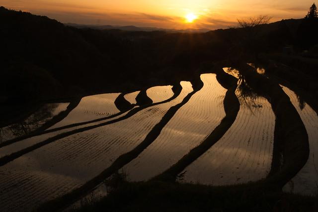 岡山県大垪和西の棚田