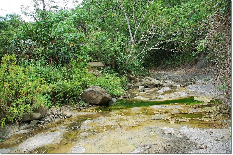 紅土(中港)溪支流河床 1
