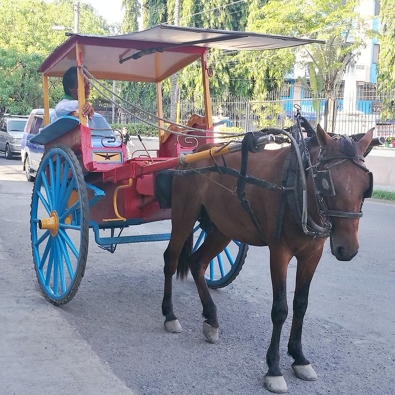 Davao Life In Cebu via AirAsia : Walking Heritage Tour by Galleon San Pedro Tours IMG_20170425_120040_286 insta