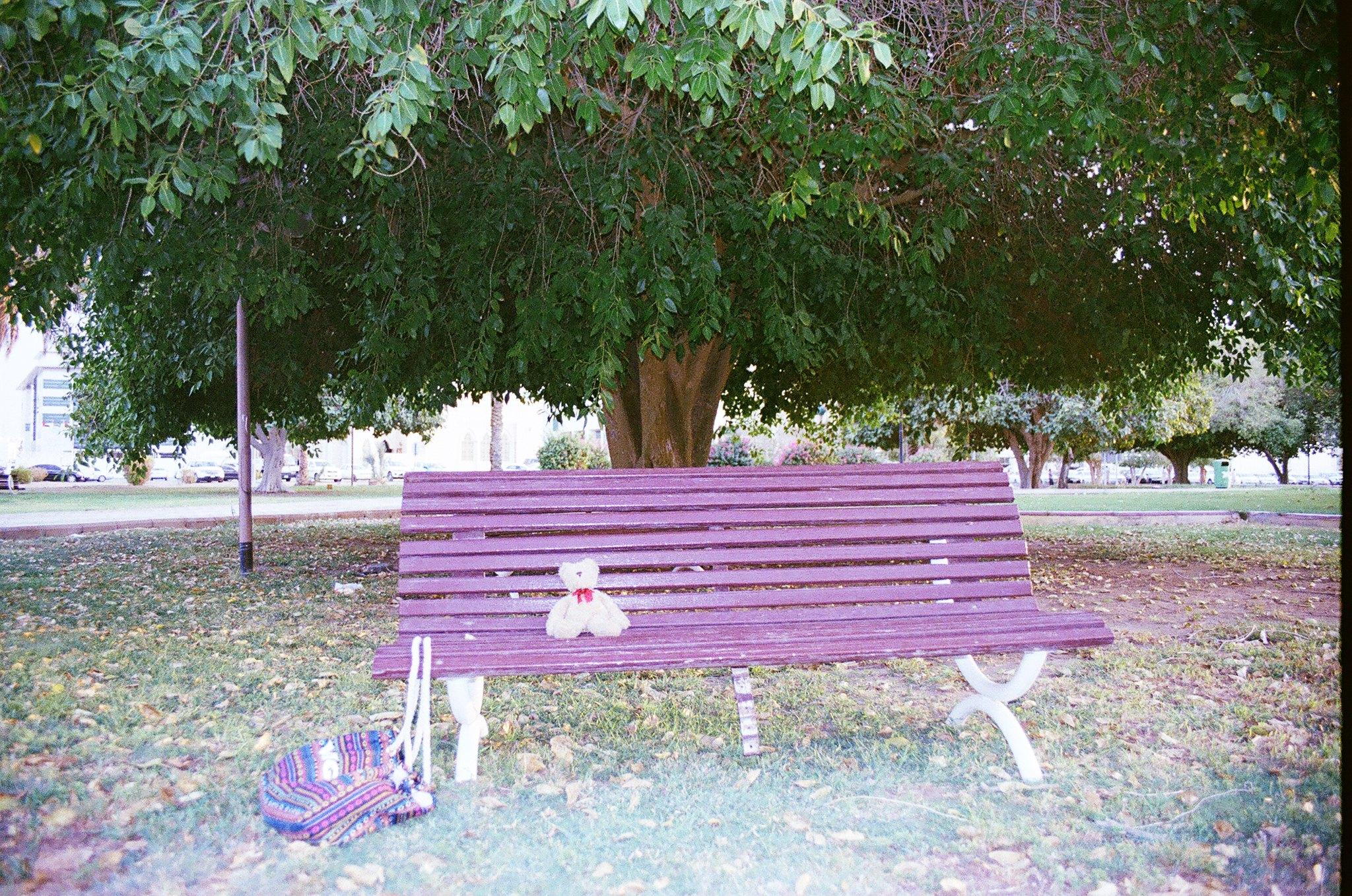 medium format-alone=-park