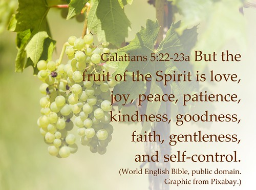 Galatians 5 fruit of the Spirit