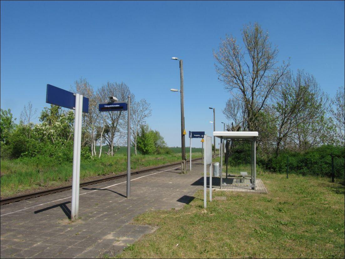 Magdeburg single treff