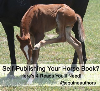 Self-Publishing Your Horse Book? Here's 4 Reads You'll Need!