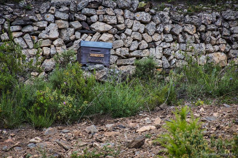 Cajón de colmena de abejas en el Camí de la Solana