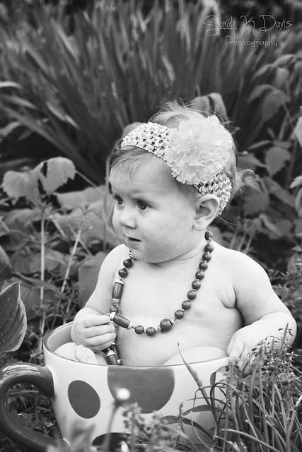 Everly's Teacup Mini