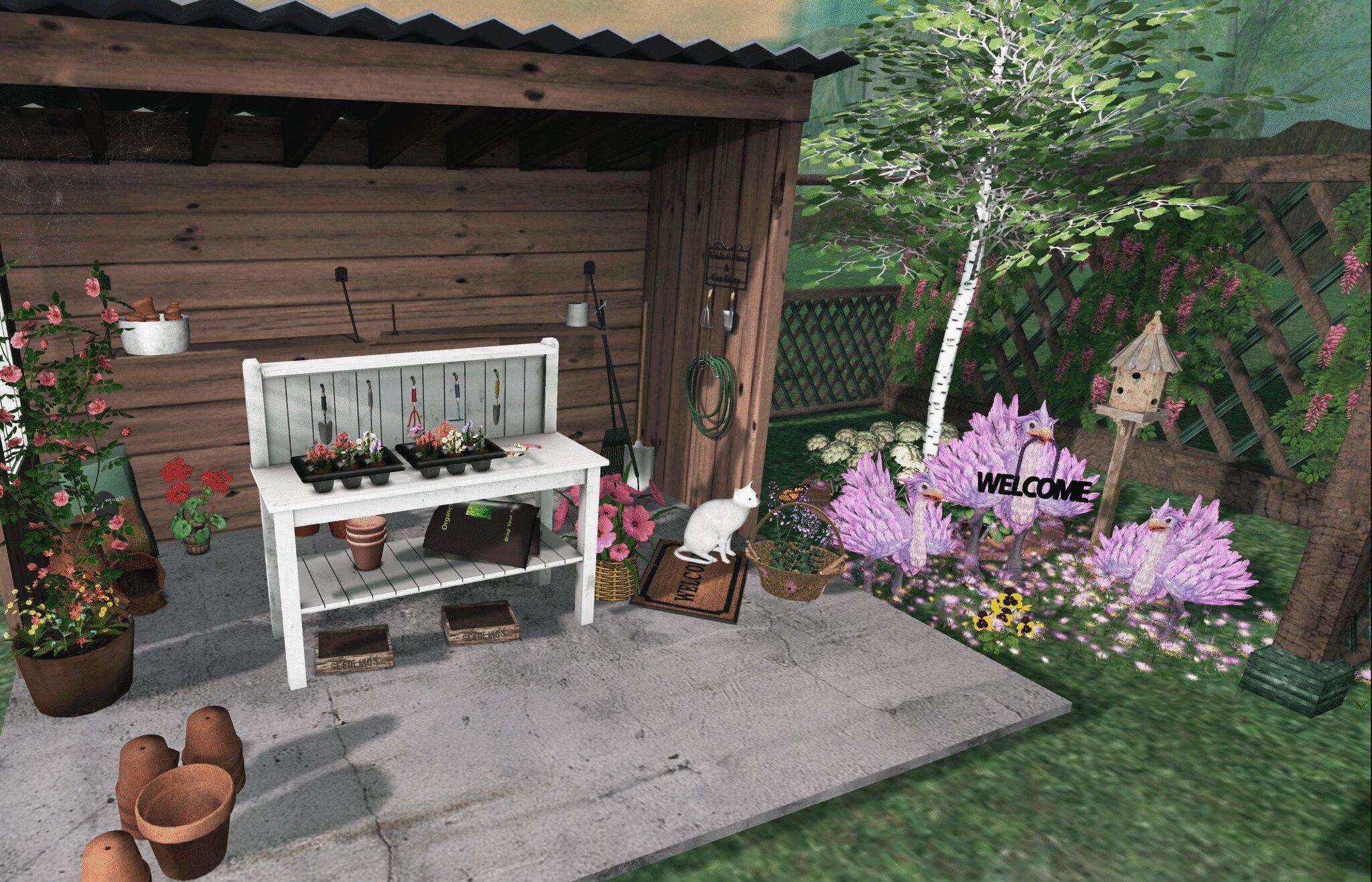 My special garden