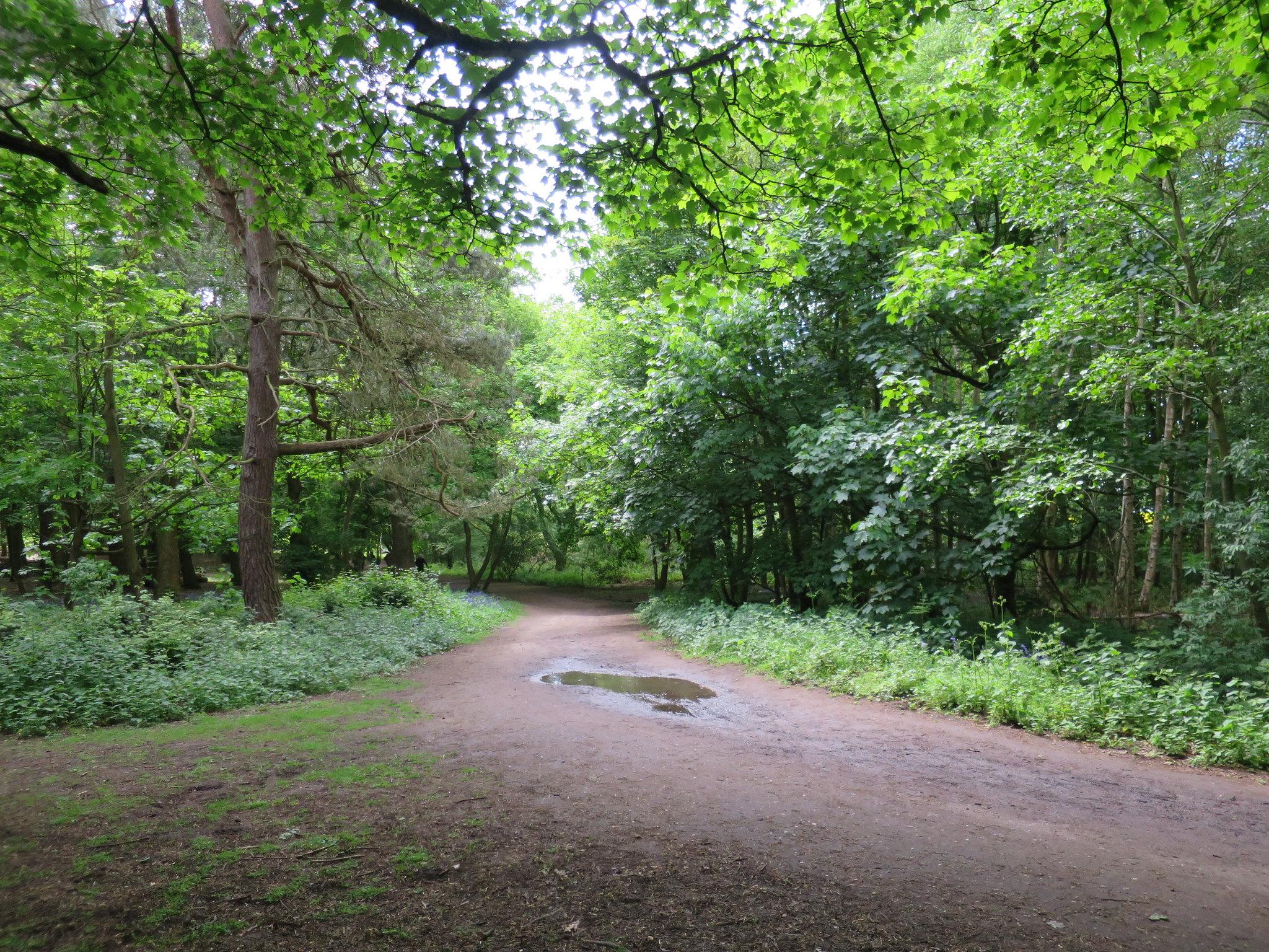 Coombe Country Park, Hello Im Clo, Culture Blogger 20