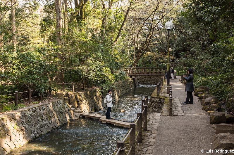 Valle-Todoroki-Tokio-31