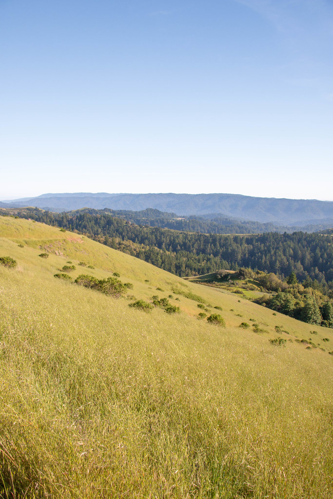 05.21. Russian Ridge Open Space Preserve