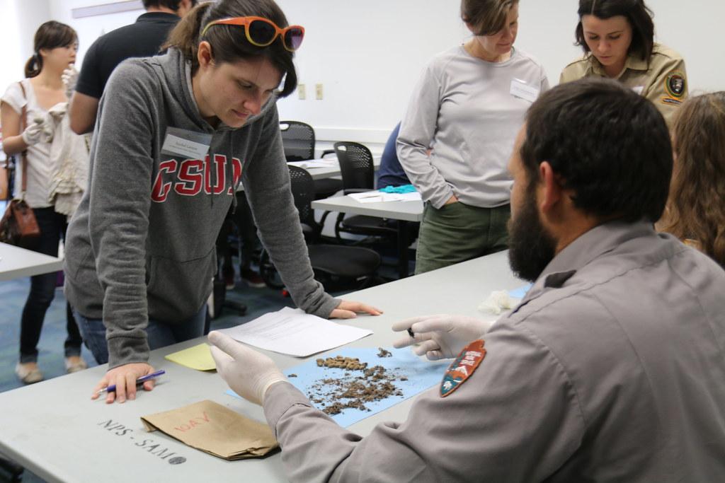 生物學家在現場指導志工辨識郊狼糞便。圖片來源:National Park Service。