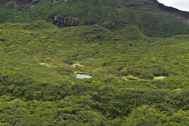八丈富士・中央火口丘の大池