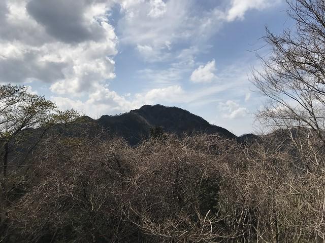 野登山 車道より仙ヶ岳