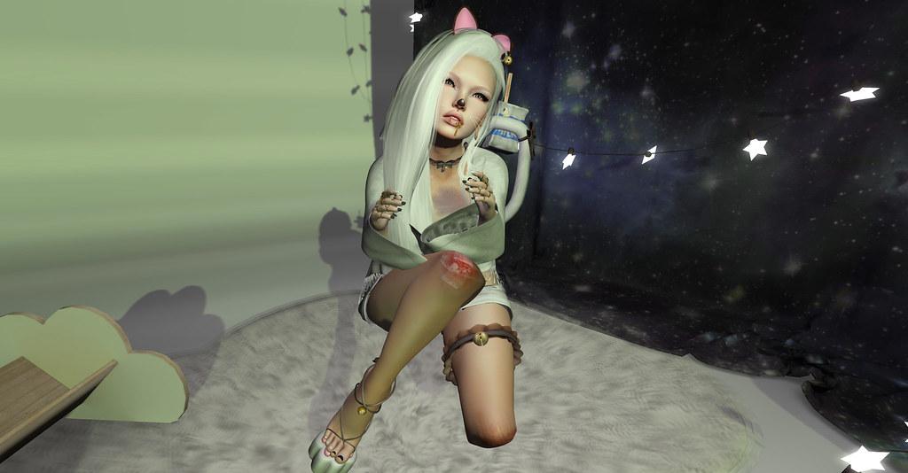 cat_001 (4)photo