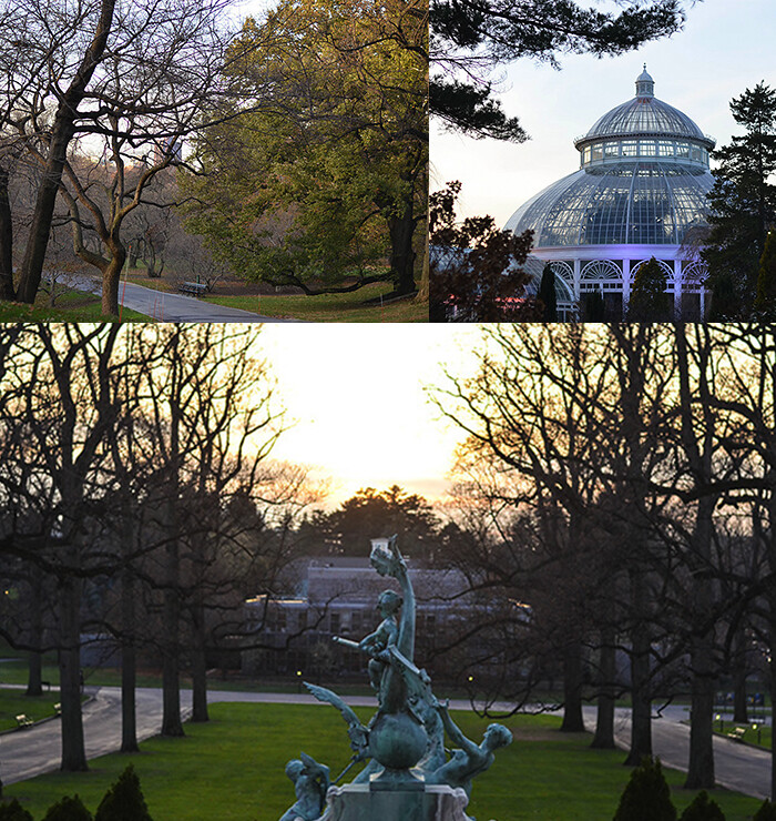5 things to do in the bronx new york city blog da laura - Bronx botanical garden free admission ...