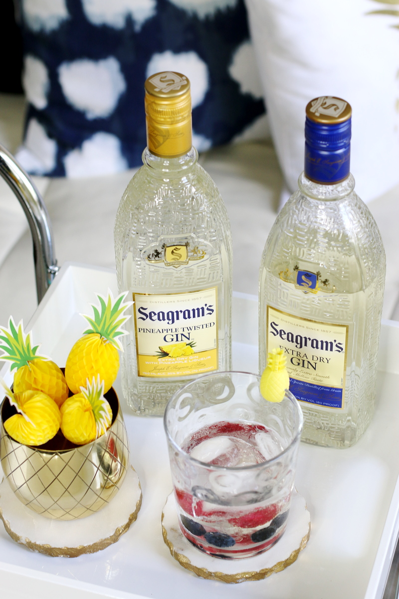 seagrams-gin-tonic-berries-5