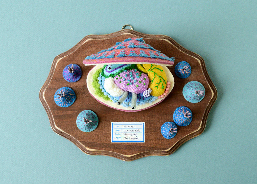 The Anatomy Of Deep Water Clam Pink Sold This Piece Flickr