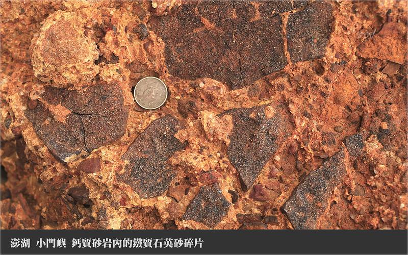 小門嶼_鈣質砂岩內的鐵質石英砂碎片